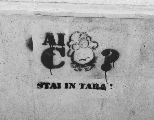 grafiti_03